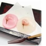 桜を浮かべた奇麗で美味しいゼリースイーツ